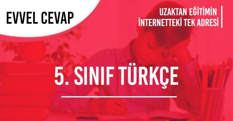 5. Sınıf Türkçe Test Çöz