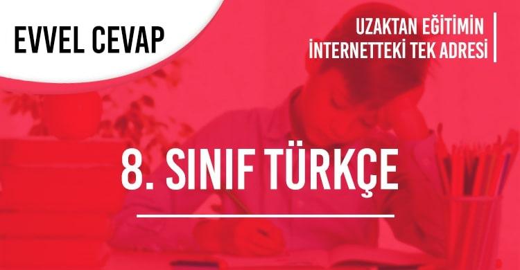 8. Sınıf Türkçe Test Çöz